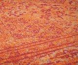 Vloerkleden Tabriz  Orange_