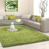 Groene vloerkleden Adriana Shaggy  1500/AY Groen_